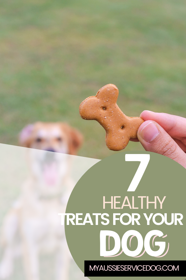 7 Healthy Treats For Your Dog article cover image