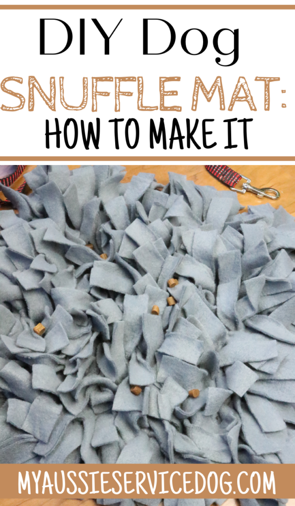 DIY Dog Snuffle Mat: How to Make It article cover image