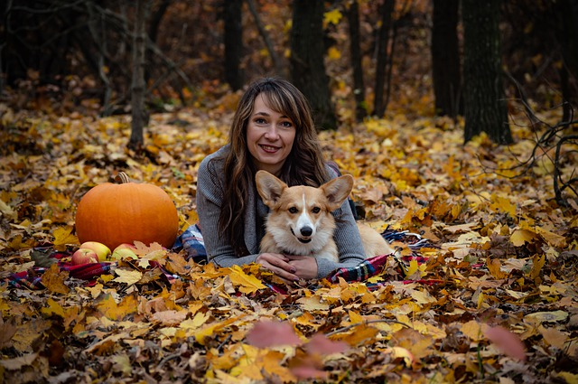 7 Ways to Bond With Your Pet