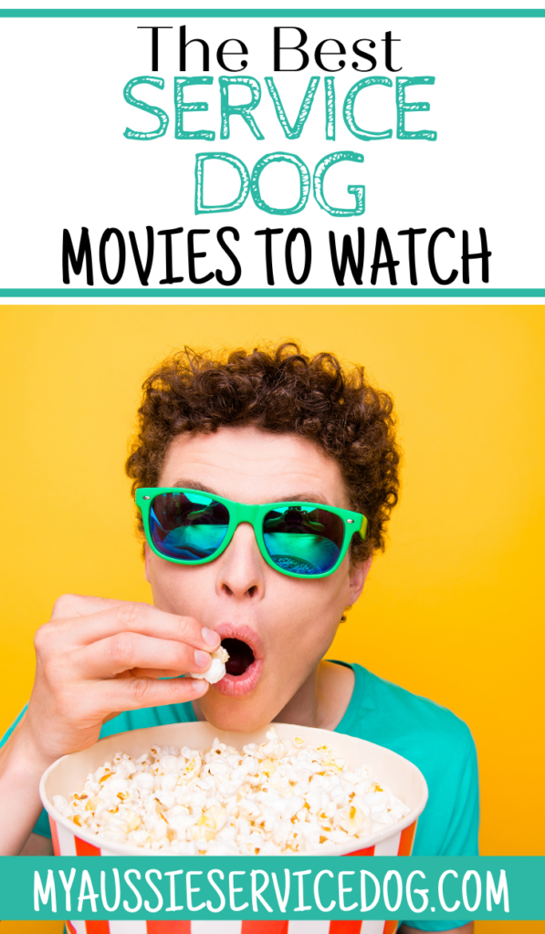 the best service dog movies to watch artcle cover image