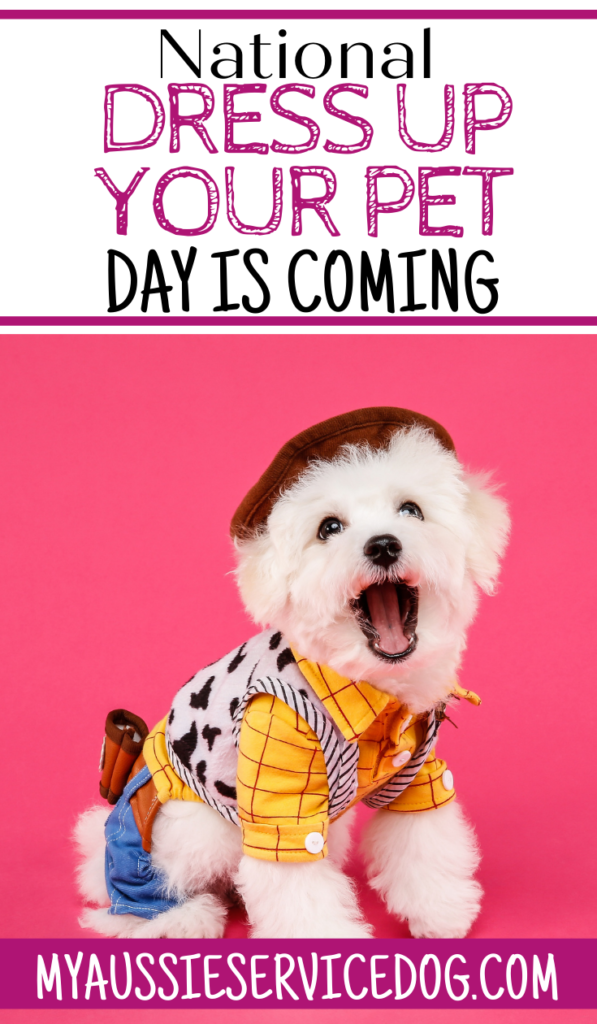 National Dress Up Your Pet Day is Coming! article cover image