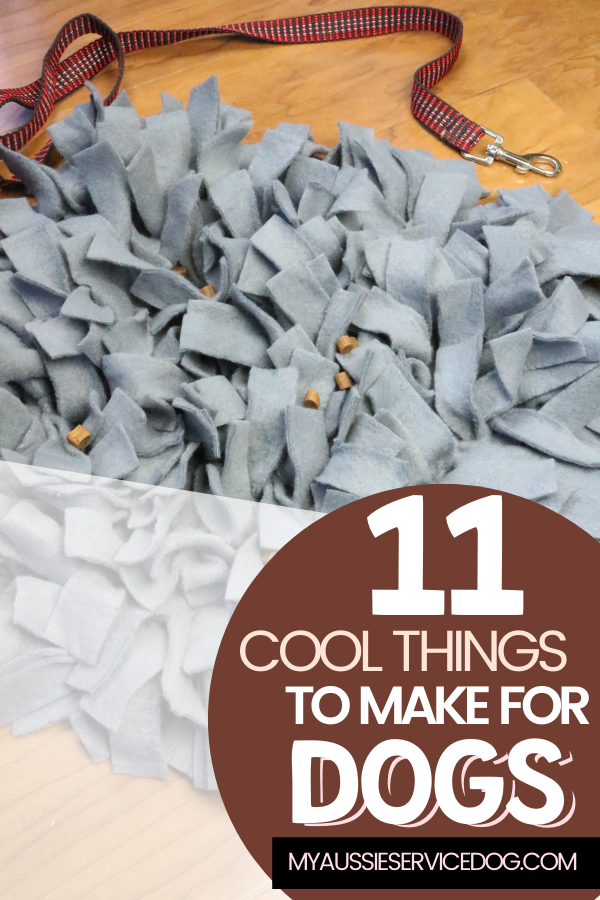 11 Cool Things To Make For Dogs article cover image