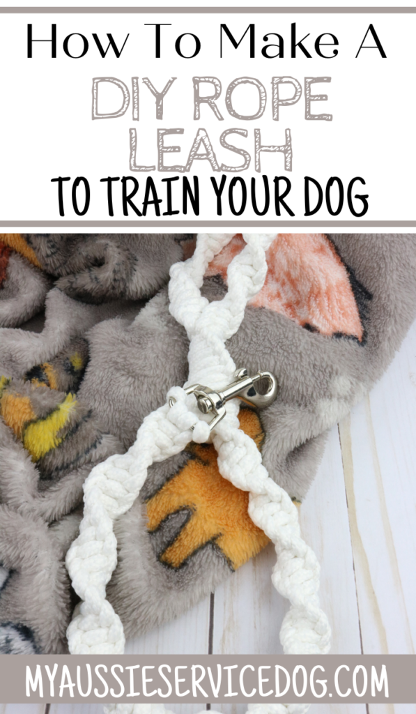 DIY Rope Leash Made From Clothesline for Your Dog