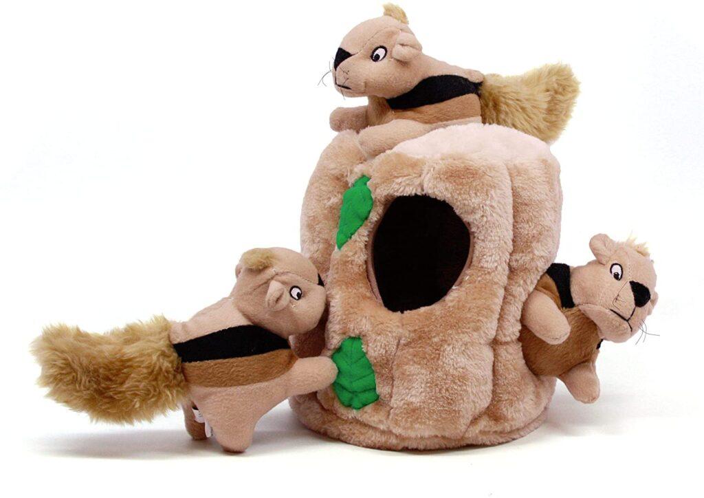 Hide-a-squirrel plush dog toy