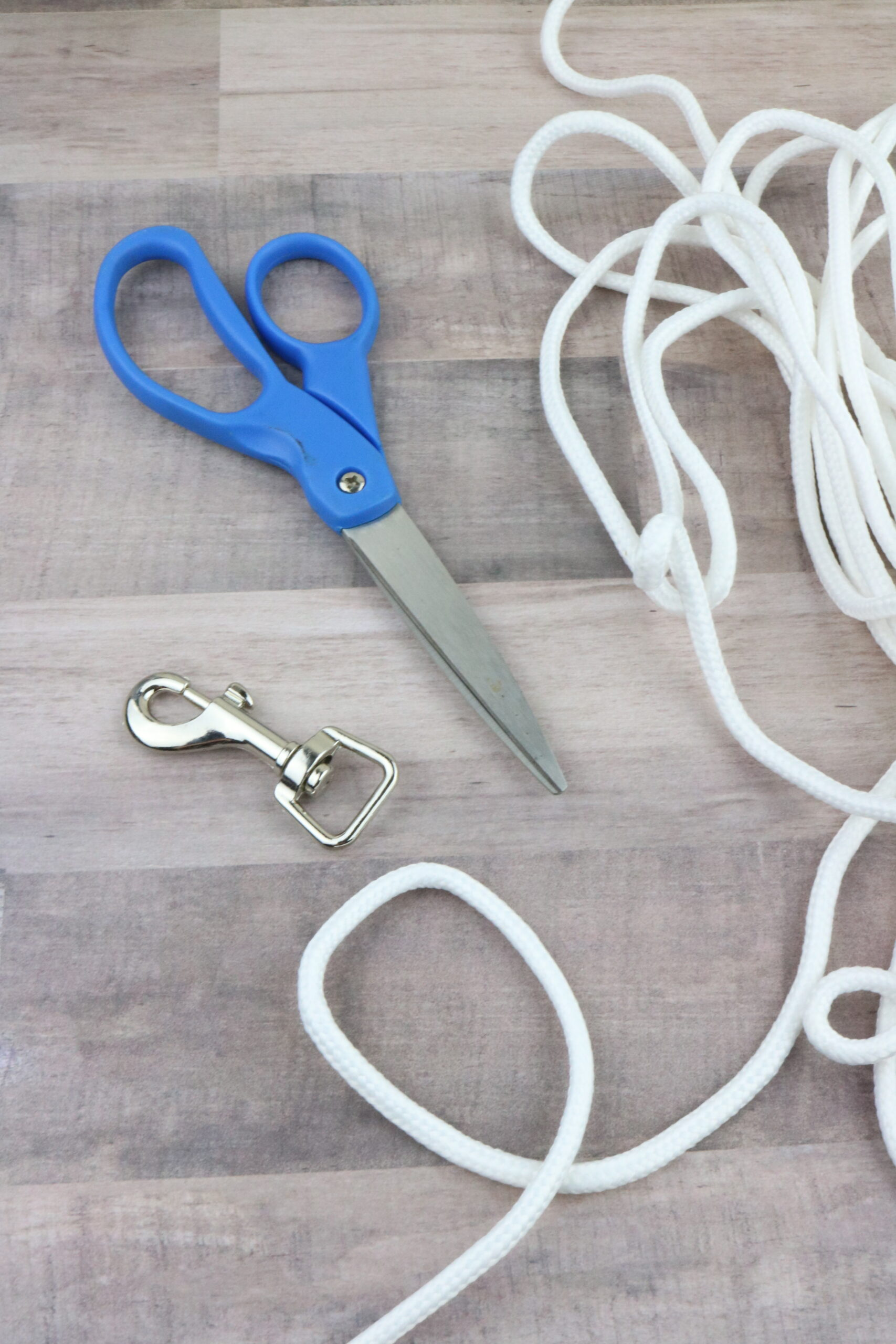 DIY Dog Leash Made From Clothesline supplies