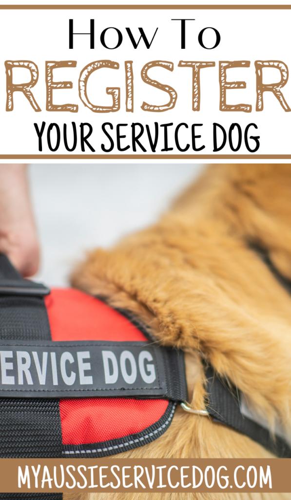 How to Register Your Service Dog