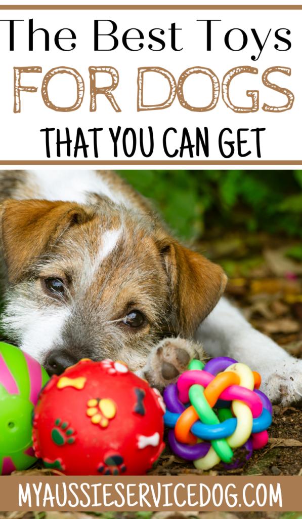 the best, safest dog toys
