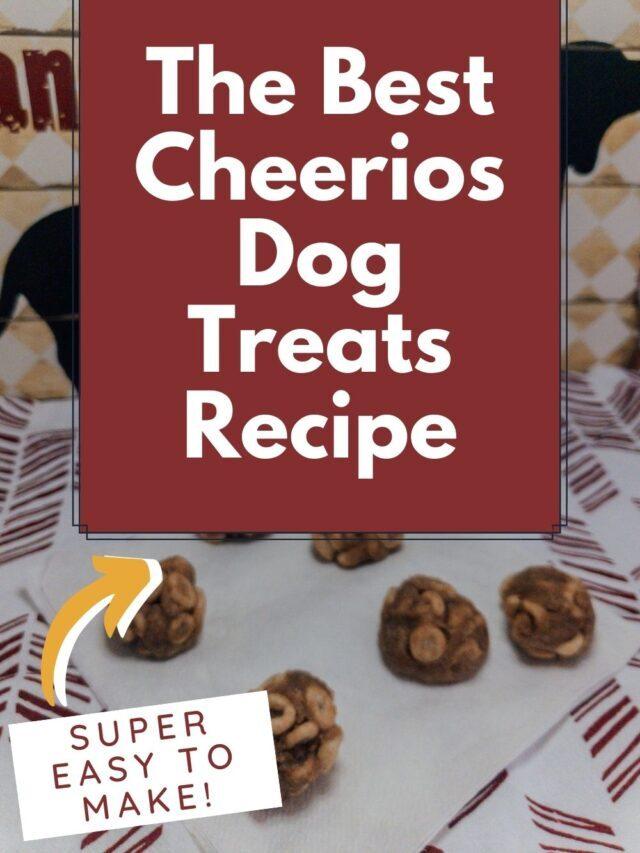 The Best Cheerios Dog Treats Recipe