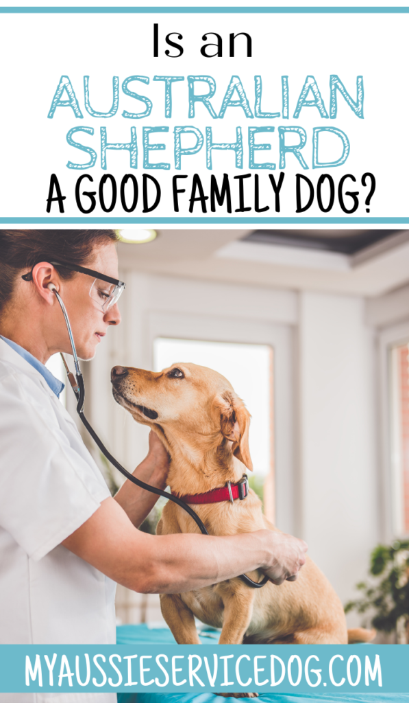 How to Choose a Veterinarian For Your Dog