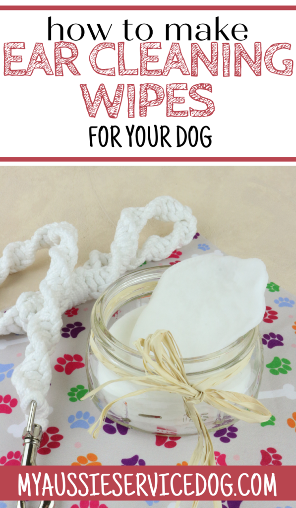 How to Clean Dog Ears: An Easy Home-Based Solution