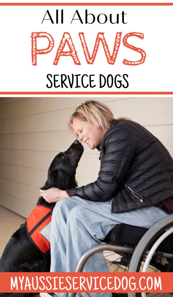 Paws Service Dogs Training Program