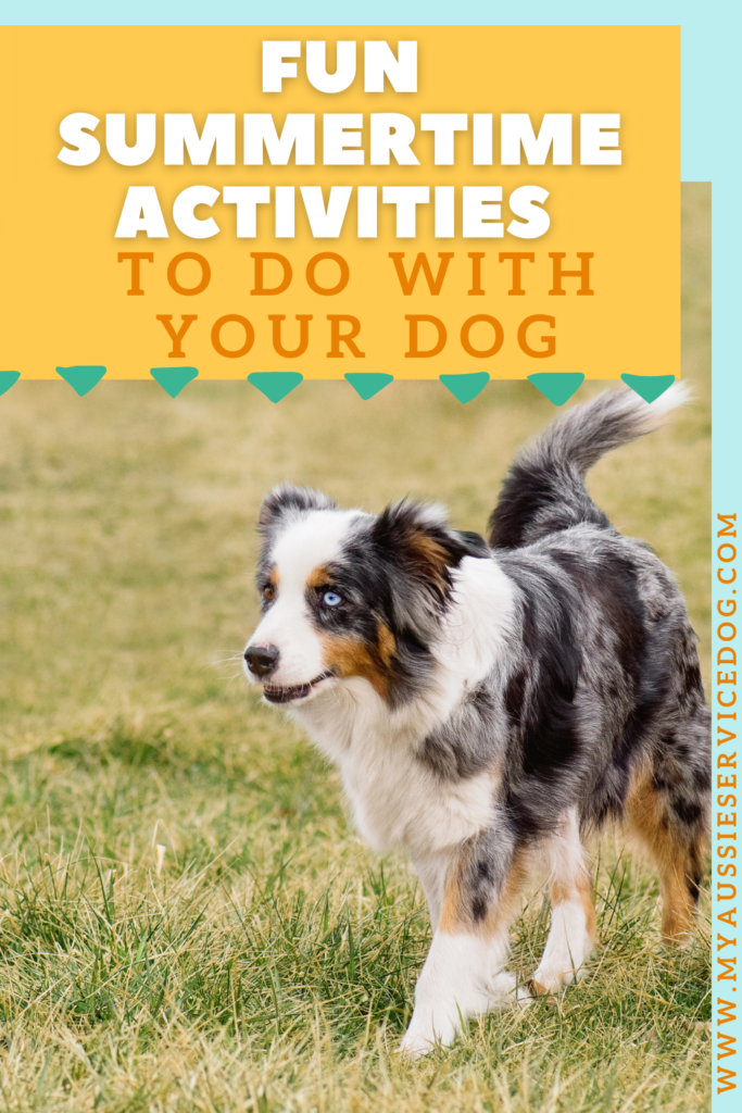 Fun Summertime Activities to do With Your Dog