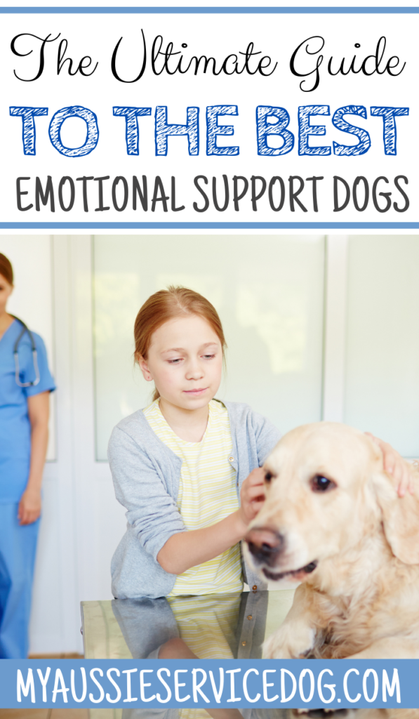 The Ultimate Guide to the Best Emotional Support Dogs
