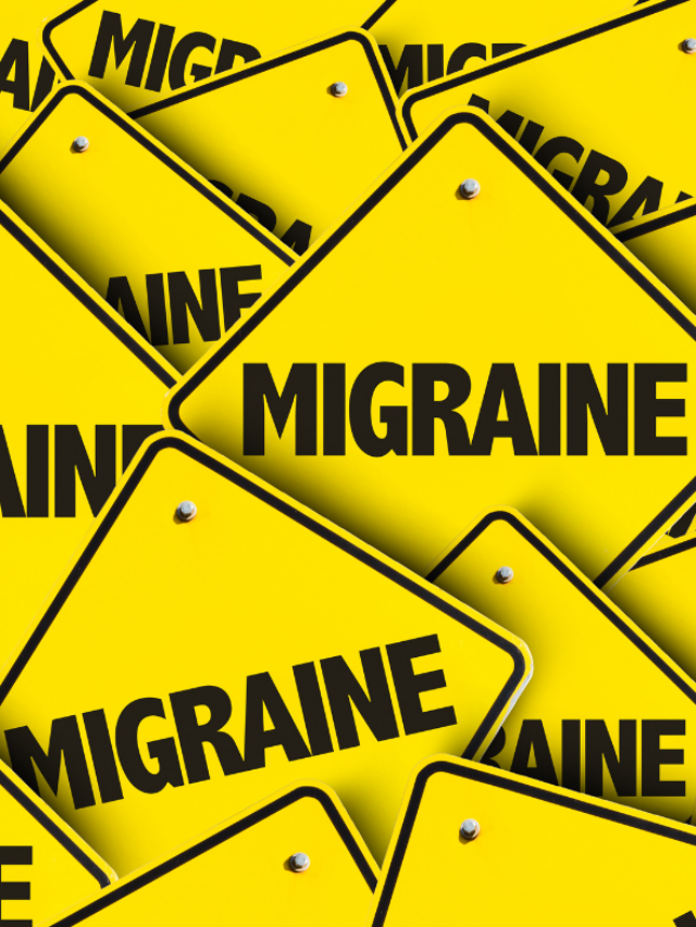 Migraine Alert Dogs: What You Need to Know