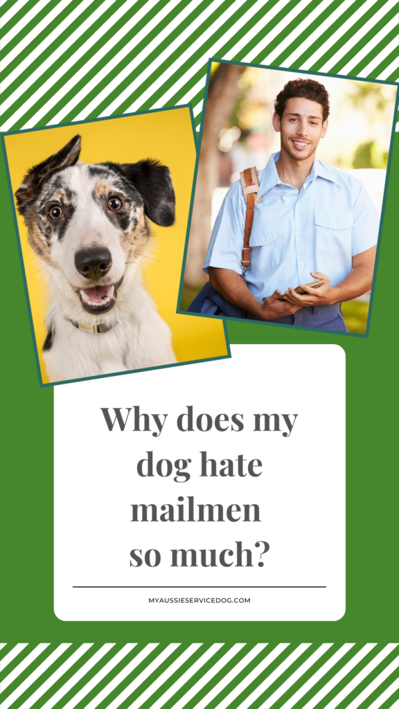 Dogs and Mailmen - Why All the Hate?